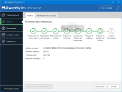 Malwarebytes - Analyses - Progression de l'analyse